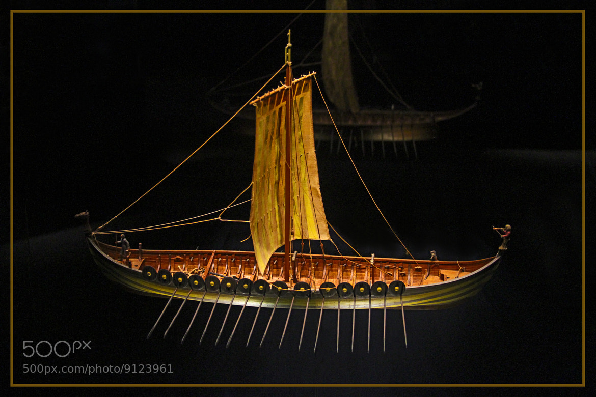 Photograph The Night Raider by Tom  Shacochis on 500px