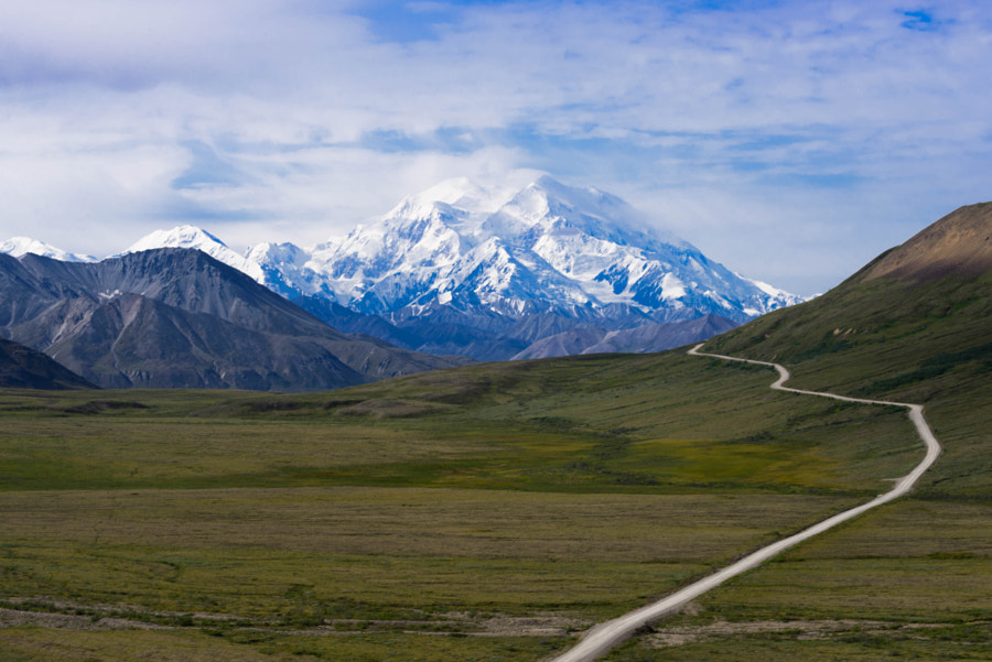 Road To Kantishna by absaroka on 500px.com