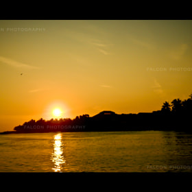 sunset by Falcon Fotography (FalconFotography)) on 500px.com