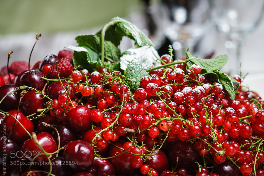 Photograph Summer Berries by Sergey Adamoff on 500px