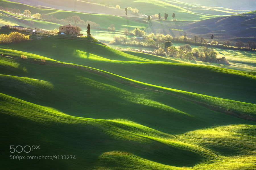 Photograph Morning harmony by Marcin Sobas on 500px