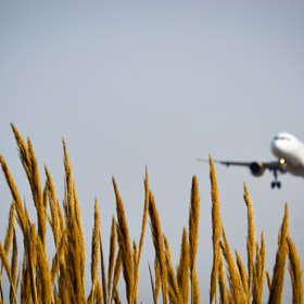 airplane by Victor Asensio (victorsnk)) on 500px.com