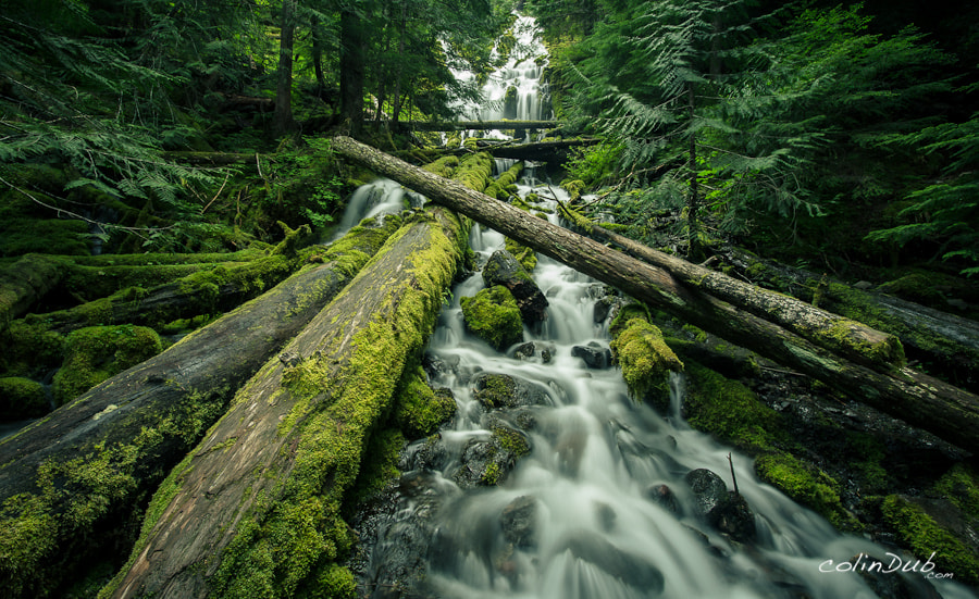 Photograph Flowing Through by Colin Wojno on 500px