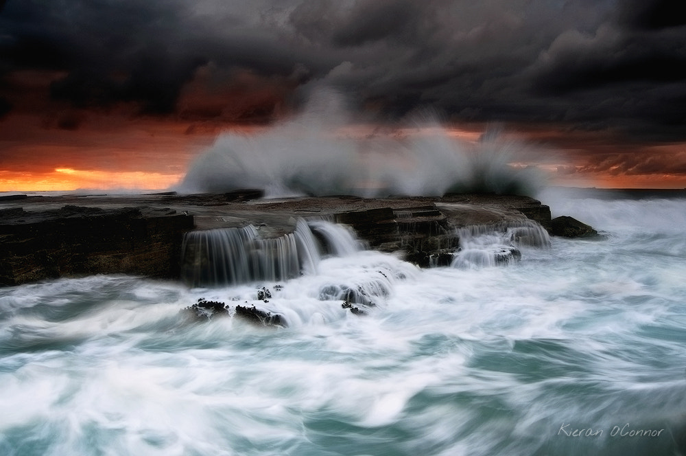 Photograph Poetic Rage by Kieran O'Connor on 500px