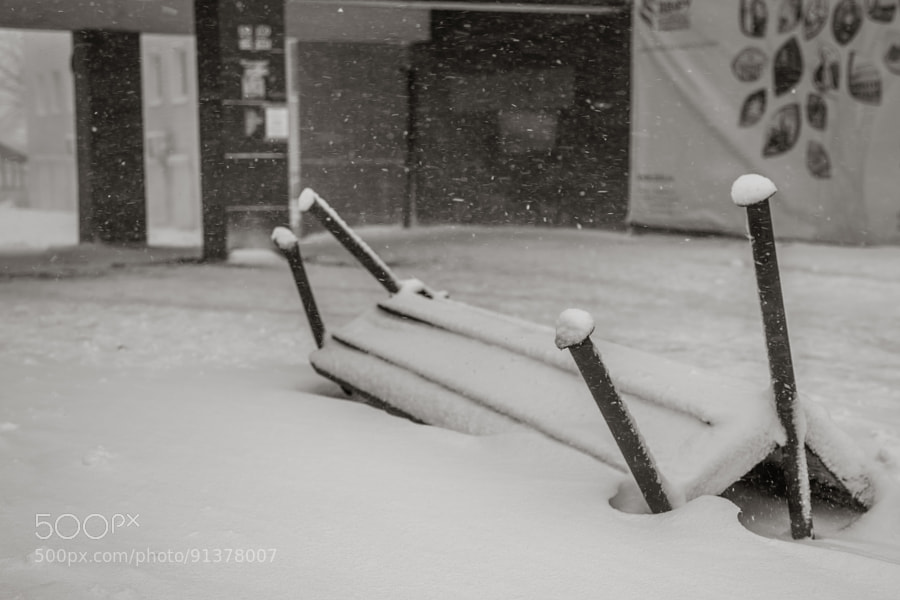 Photograph Snow in Vladivostok by Daniil Ryzhkov on 500px