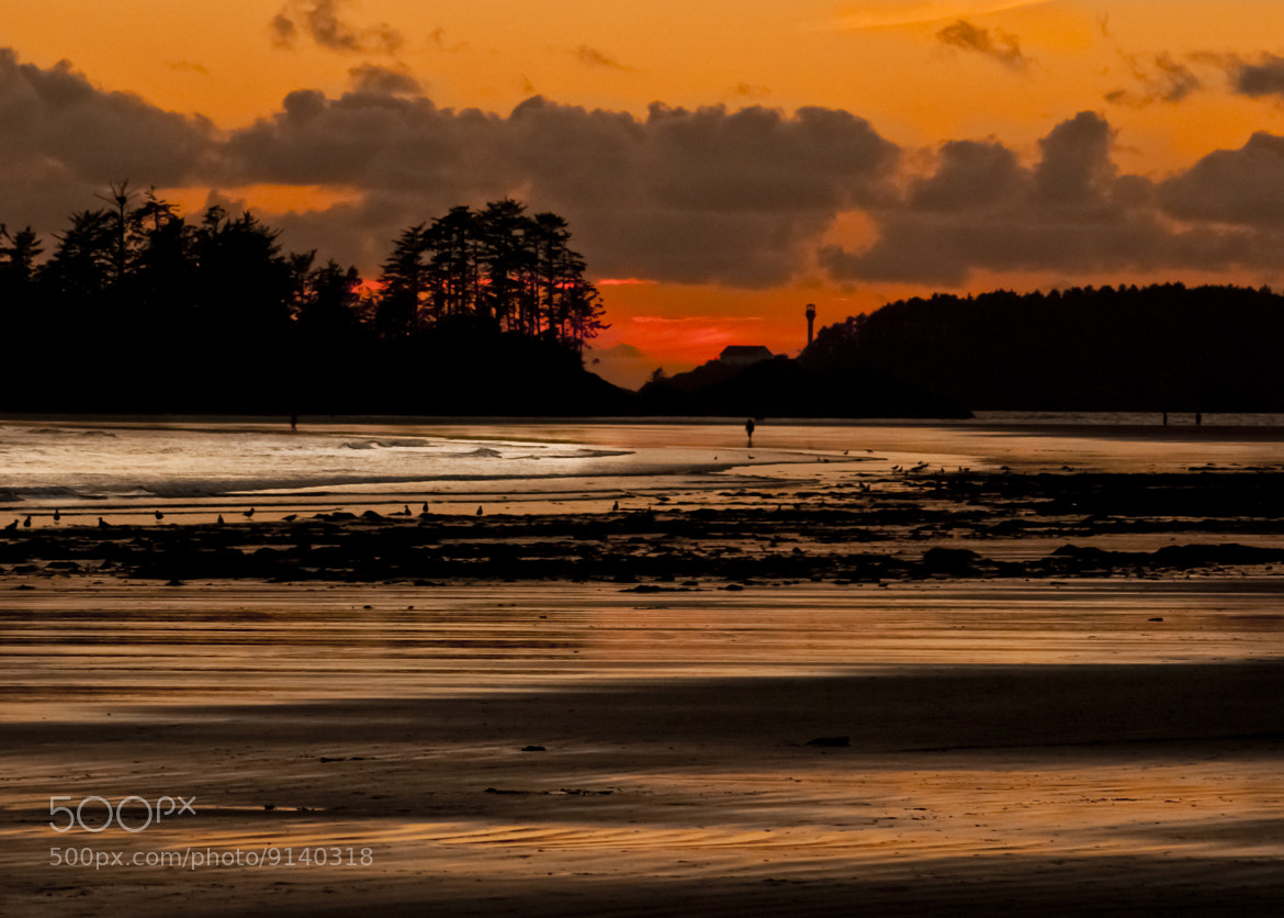 Photograph Last light by Duncan Speight on 500px