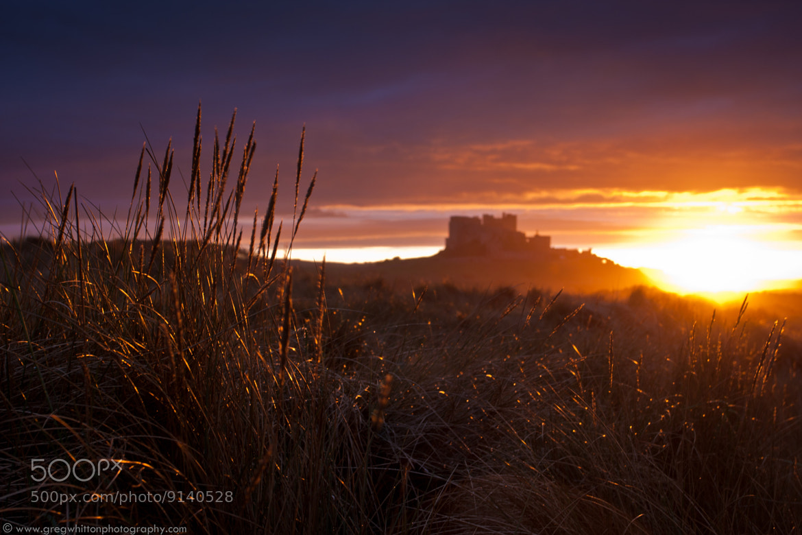 Photograph Bamburgh Dunes by Greg Whitton on 500px