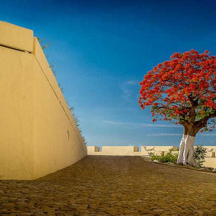 Luanda #11