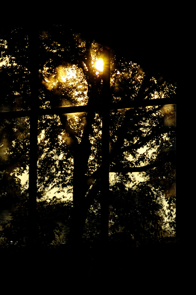 Photograph Window Glow by Dave Clark on 500px