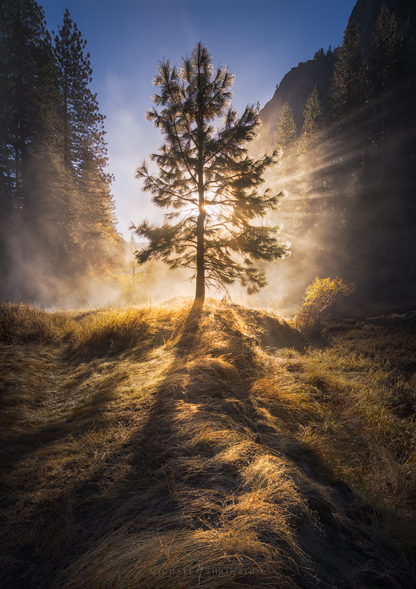Photograph The Valley of Light by Michael Shainblum on 500px