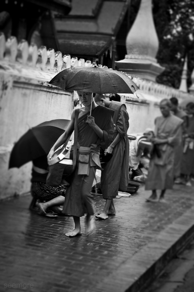 Photograph Monk by Lauren Seymore on 500px