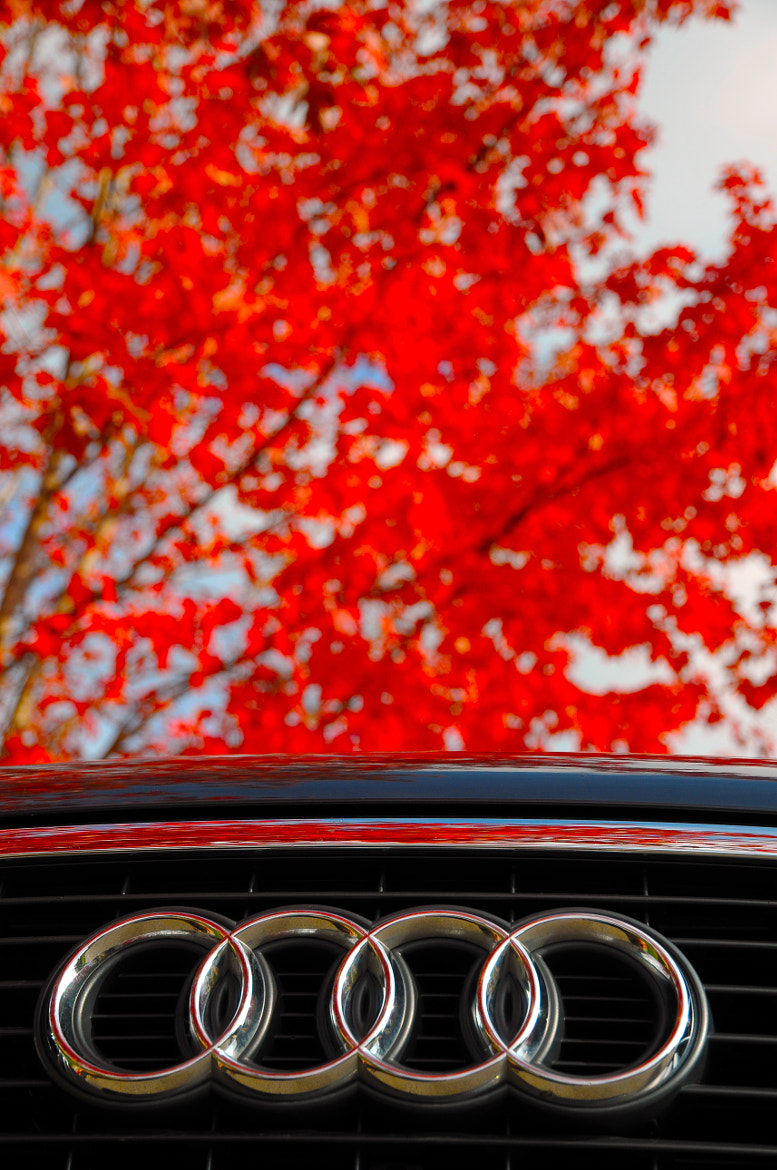 Photograph AUDI by Dragan Kudjerski on 500px