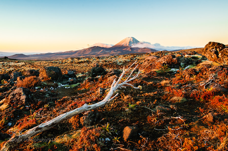 Photograph Tongariro NP by Lambert Traccard on 500px