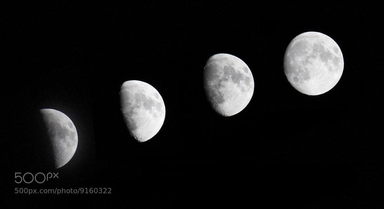 Photograph Circle of Life by Francisco Mula on 500px