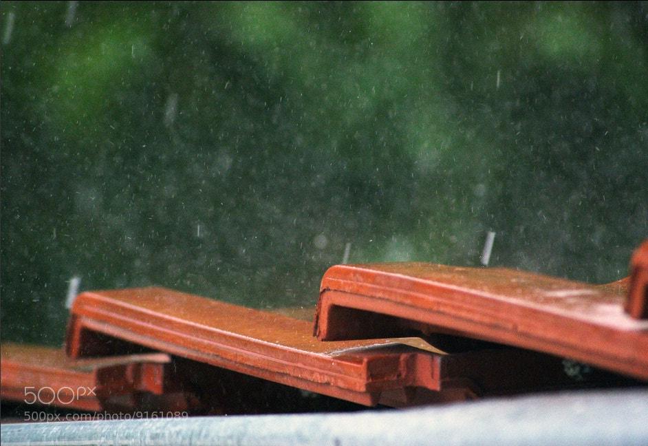 Photograph Rainy  by Veneta Atanasova on 500px