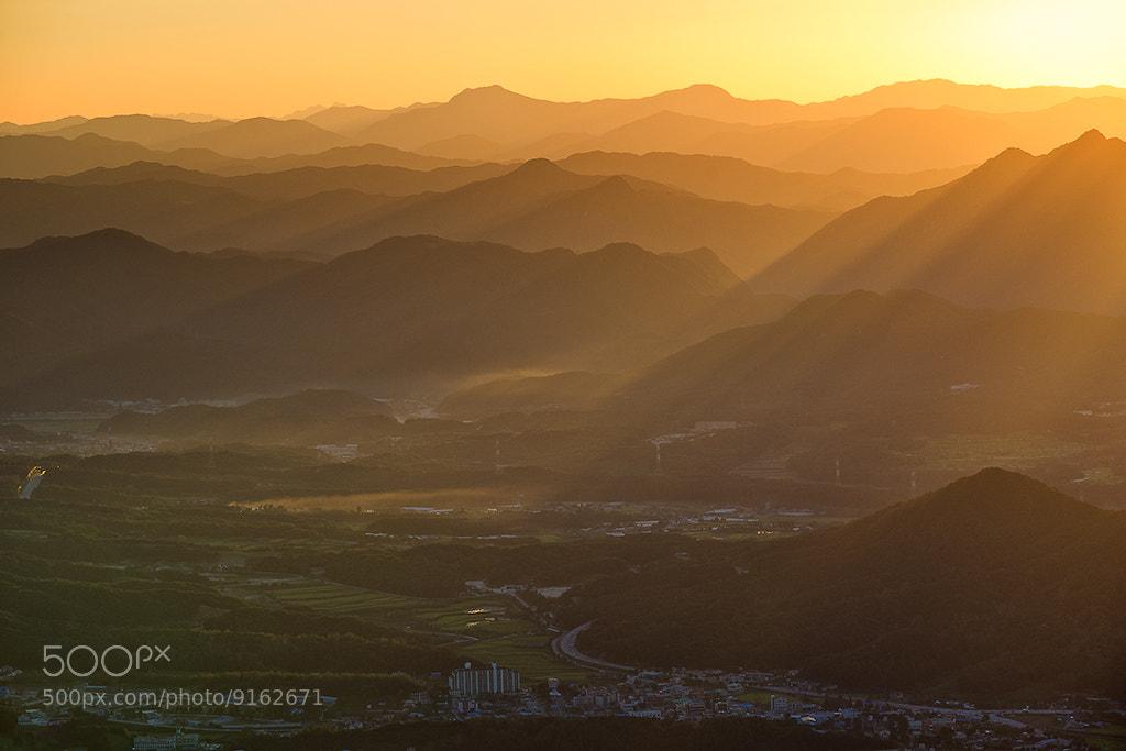 Photograph 황금빛 by yu gwansun 유관선 on 500px