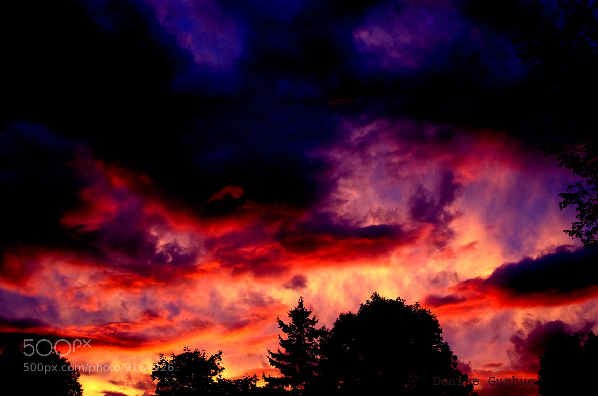 Photograph Irene Skies by Denise Gushue on 500px
