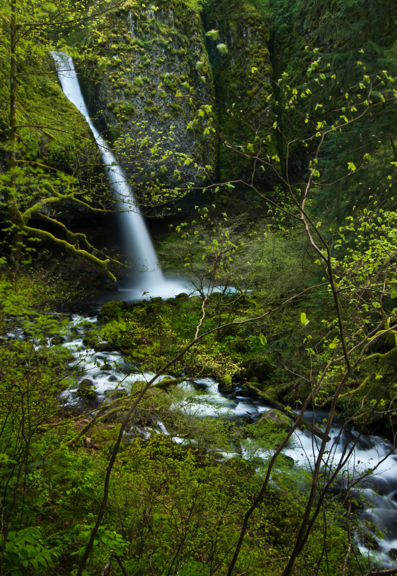 Photograph Ponytail Falls by Kirk DuBose on 500px