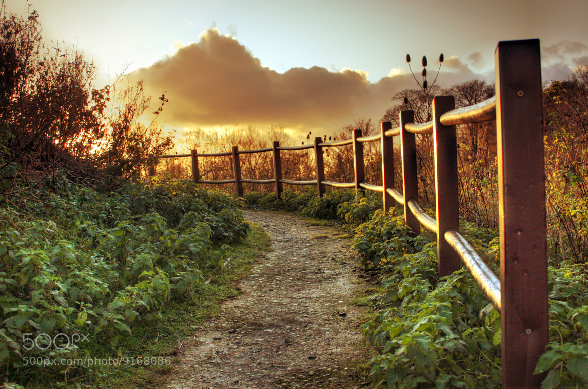 Photograph Round the bend by DollyArt on 500px