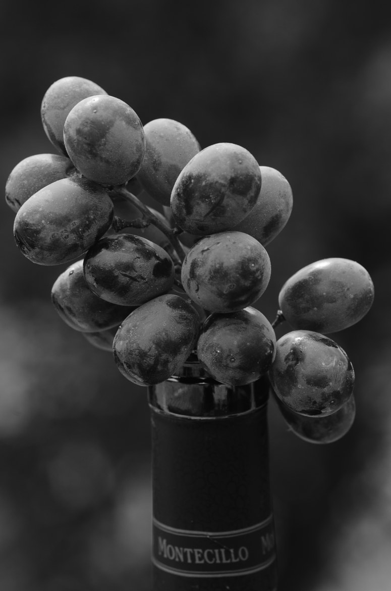 Photograph From grape,too wine by Kolbein Svensson on 500px