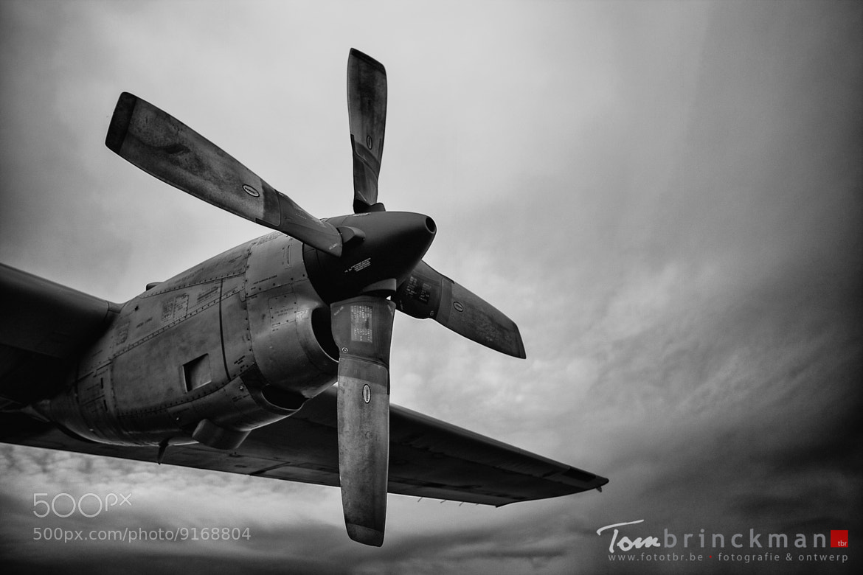 Photograph Hercules by Tom Brinckman on 500px