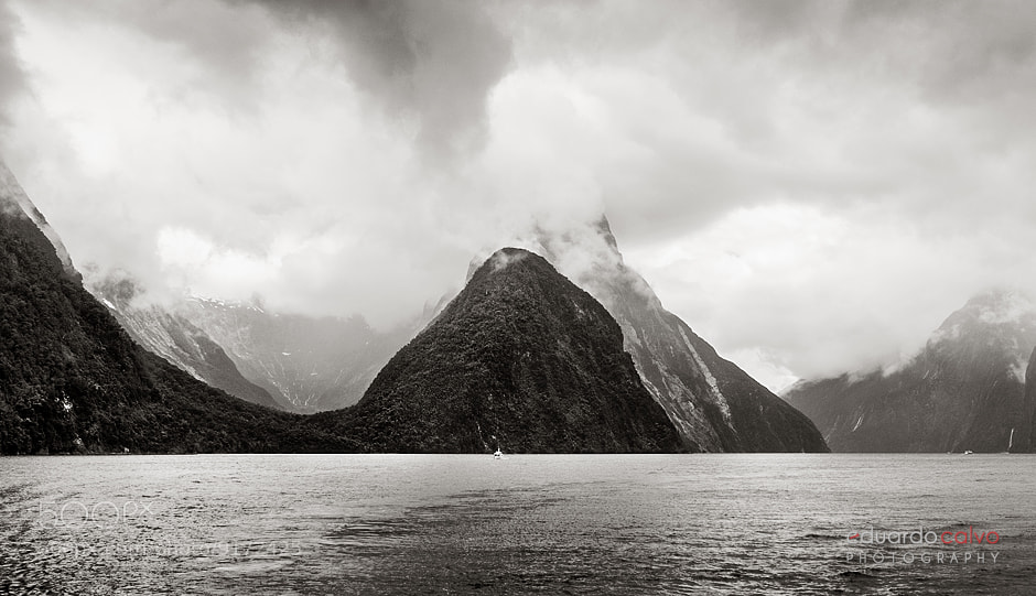 Photograph Milford Sound by Eduardo Calvo on 500px