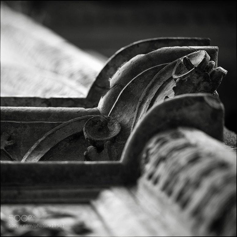 Photograph Fragment.I by Larisa Gurjeva on 500px