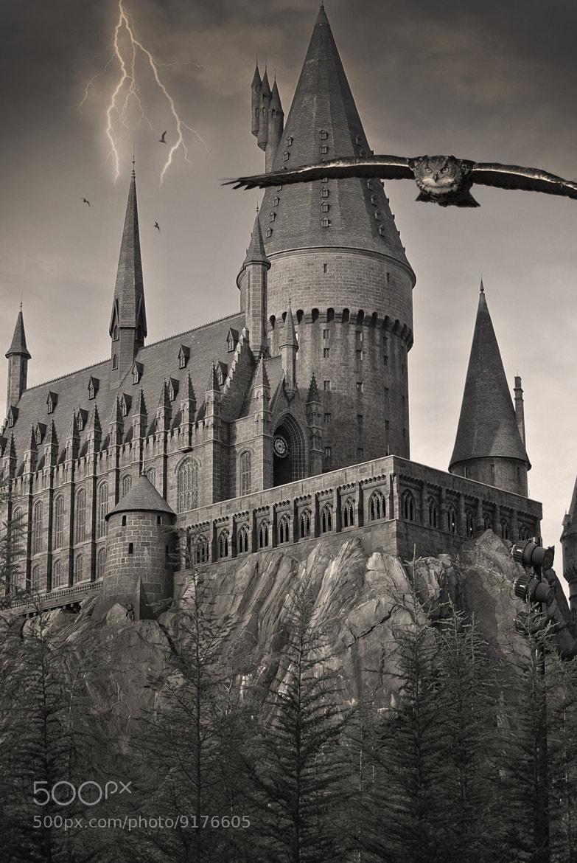 Photograph Harry Potter by Neil Harsant on 500px