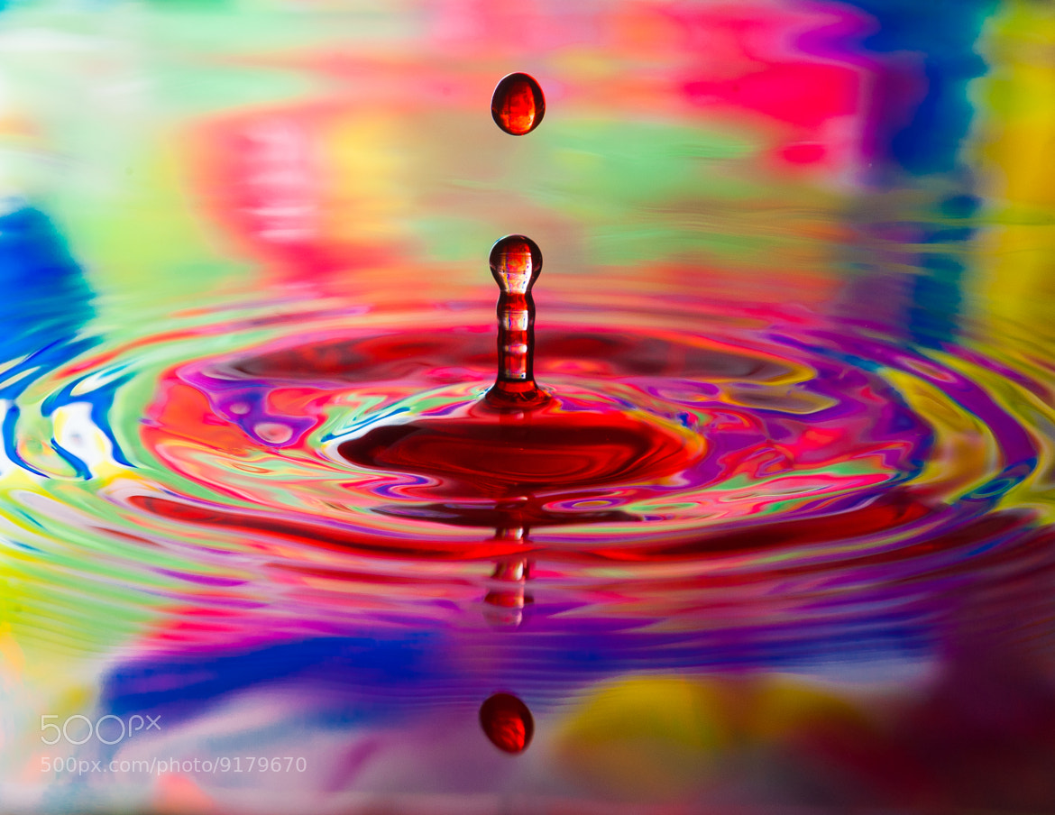 Photograph Water Droplets With Color by Gray Kinney on 500px