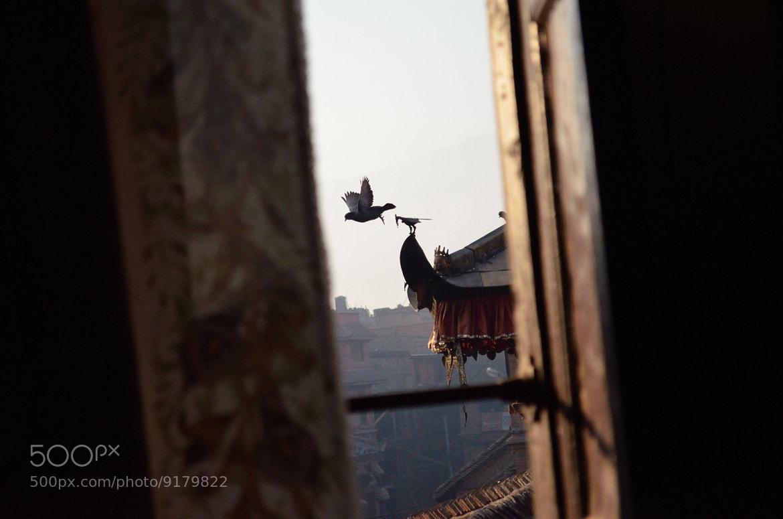 Photograph Natural vs Manmade by bipin karmacharya on 500px