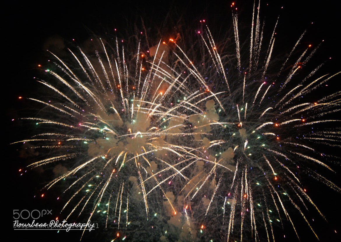 Photograph 4th of July by Marisa Nourbese on 500px