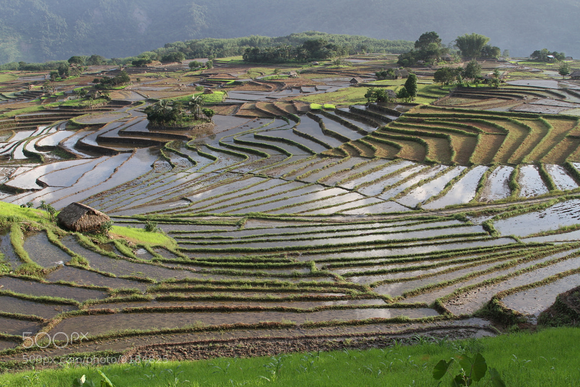 photograph terrace farming by kaling dai on 500px