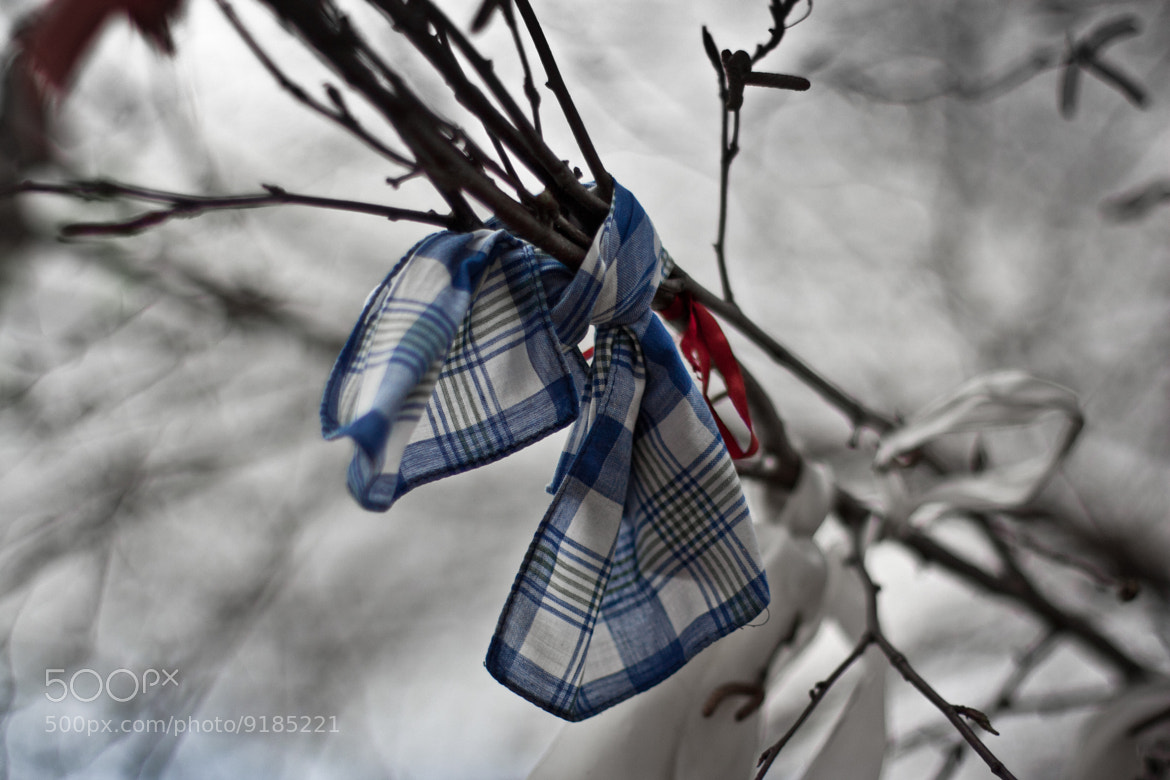 Photograph Ribbon by Vladimir S. on 500px