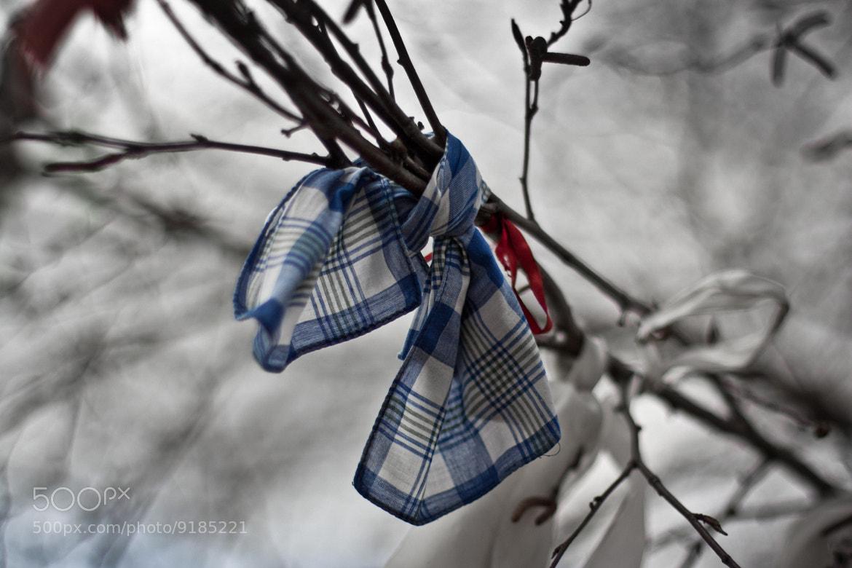 Photograph Ribbon by Vladimir Senchikhin on 500px