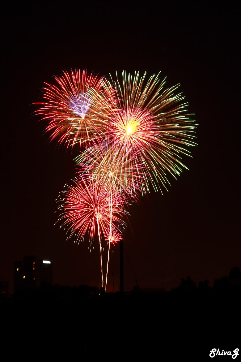 Photograph July 4th 2012 Fireworks.. by ShivaG  Photography on 500px