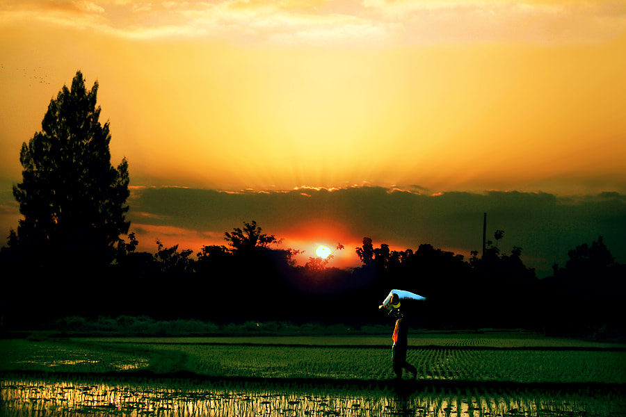 Photograph Time to Go Home by 3 Joko on 500px