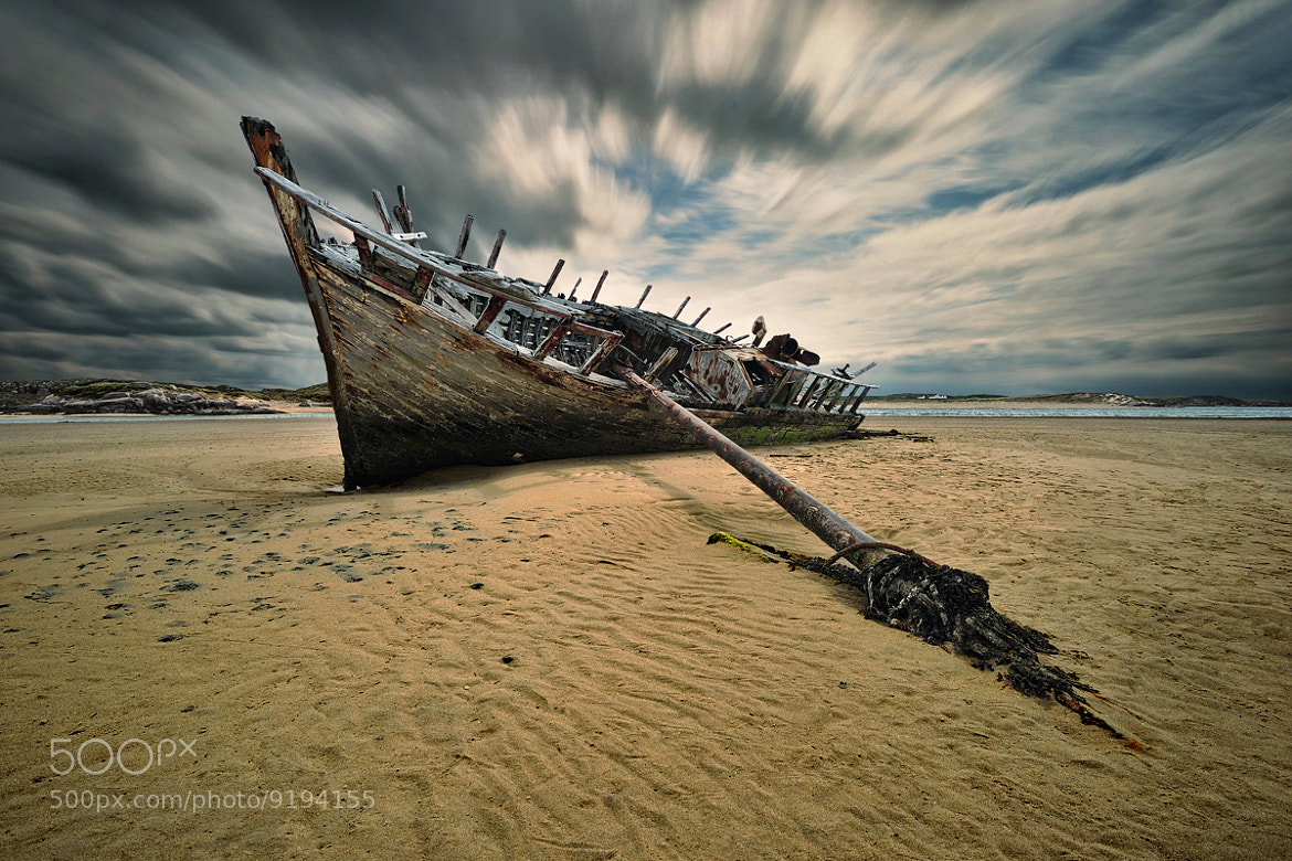 Photograph Bad Eddie... by Pawel Kucharski on 500px