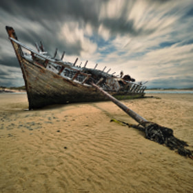 Bad Eddie... by Pawel Kucharski (pablook)) on 500px.com