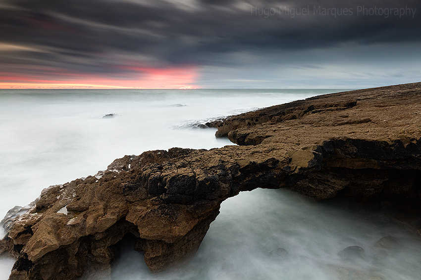 Photograph The claw by Hugo Marques on 500px