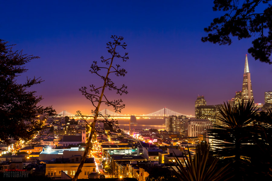 Photograph Park View by Marvin Manabat on 500px