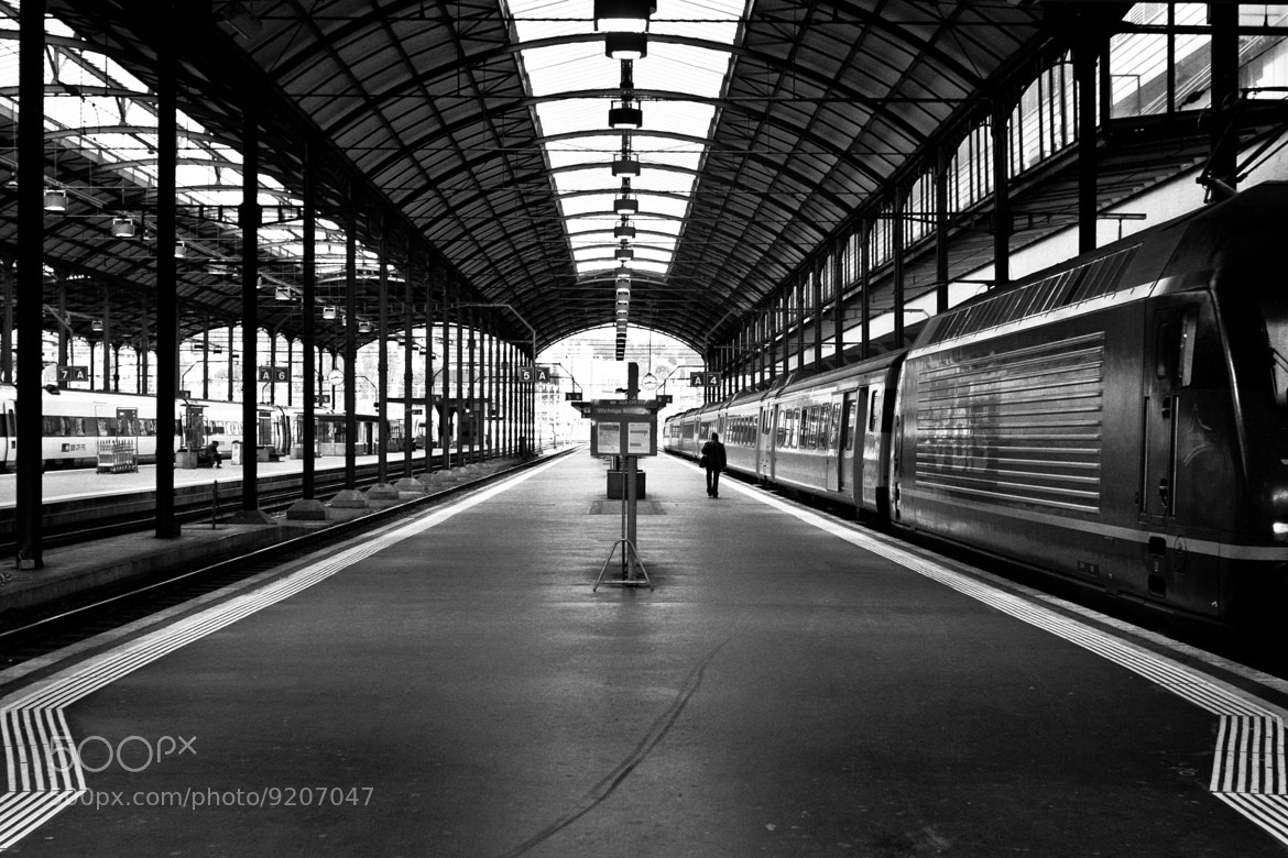 Photograph Walk the line by Nuno Monteiro on 500px