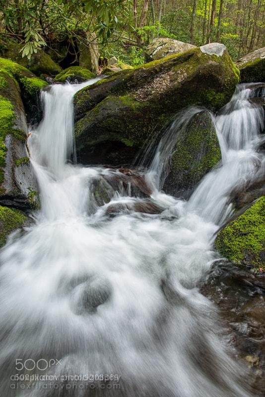 Photograph Spring Flow by Alex Filatov   alexfilatovphoto.com on 500px