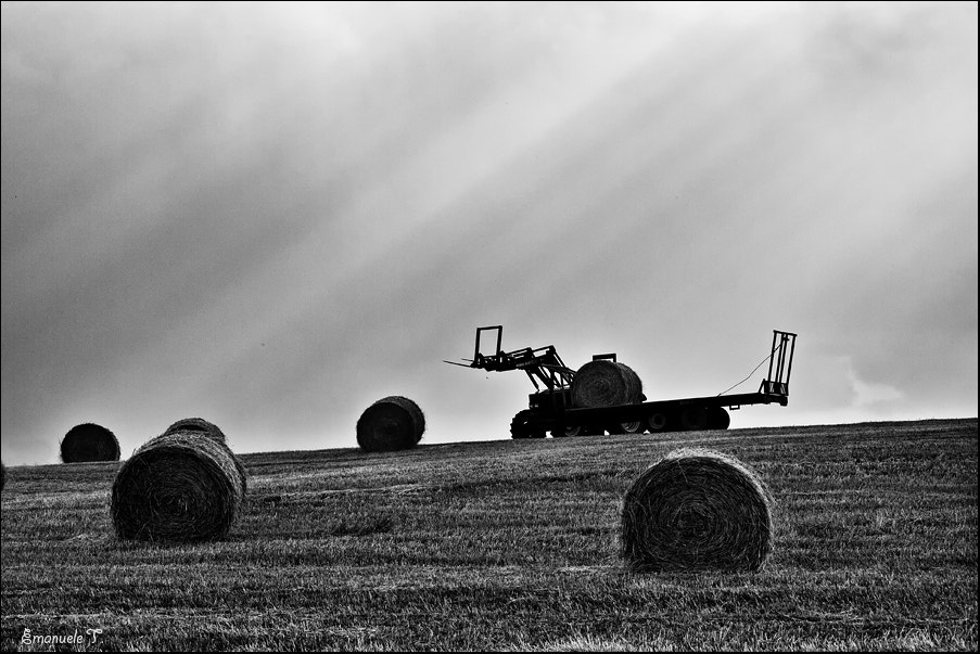 Photograph Harvest by Emanuele Torrisi on 500px