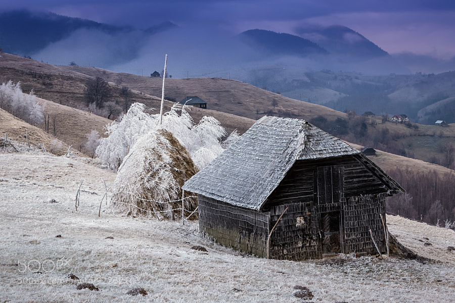 Photograph Cold Morning by Attila Szabo on 500px