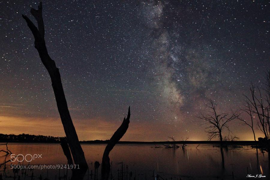 The Milky Way Tree by Aaron J. Groen (AaronGroen)) on 500px.com