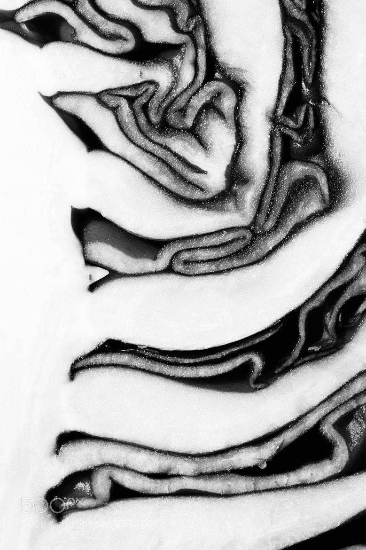 Photograph Layers by David Manzi on 500px
