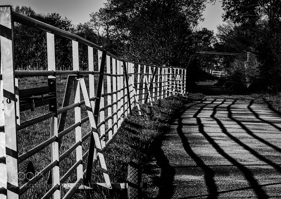 Photograph Lines by Dave Gregory on 500px