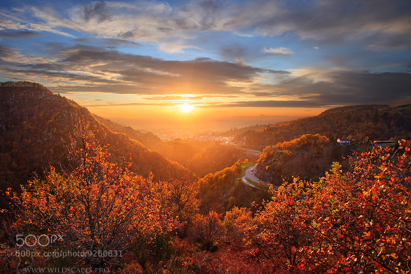 Photograph Sweet November by Maxime Courty on 500px