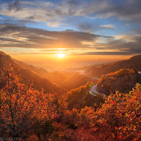 Sweet November by Maxime Courty (maximecourty)) on 500px.com