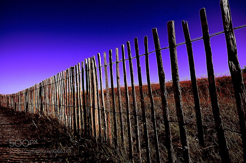 Photograph sauvegarde by kak tuss on 500px